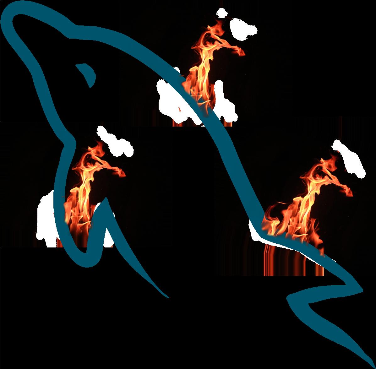 MySql_fire